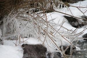 winter bij Ventis